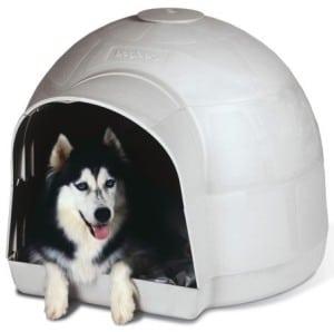 niche-chien-plastique-igloo